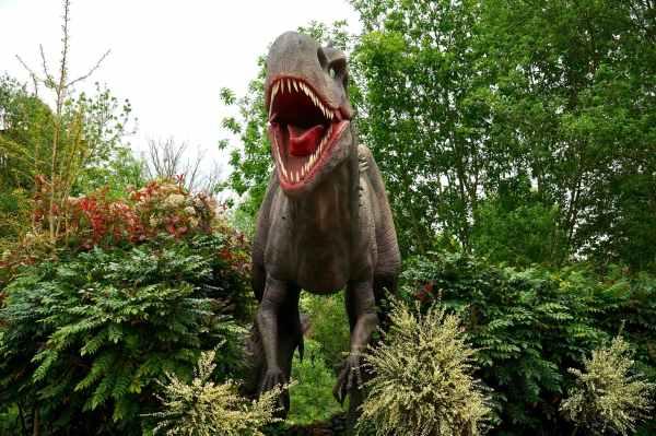 dinosaur evergreen figure garden